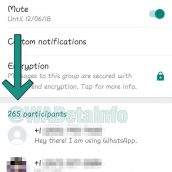 Is WhatsApp going to increase group chat size limit?