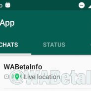 WhatsApp beta for Android 2.17.213: what's new?