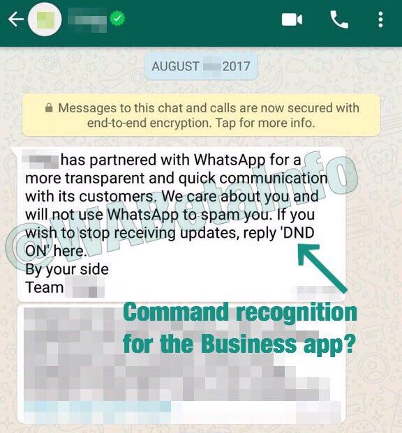 First Verified Business Accounts appear in WhatsApp! | WABetaInfo
